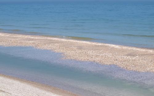 Море в Степке весной