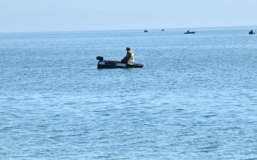 Морские охотники