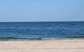 Море в заказнике Федотова коса